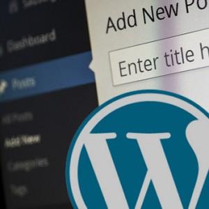 crear blog wordpress basico